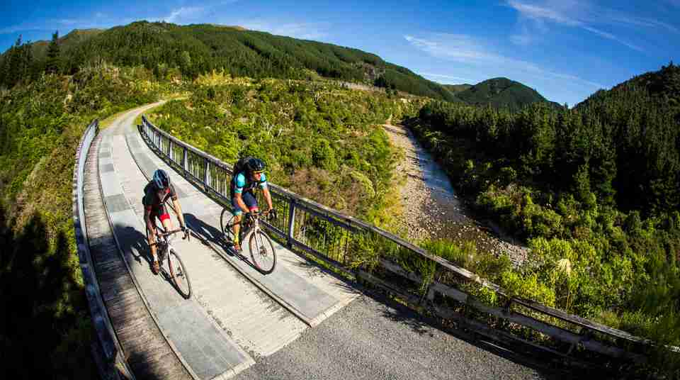 Remutaka Cycle Trail and Hutt River Trail_ people mountain biking