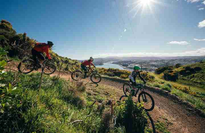 Te Ara a Rangituhi Reserve_Family mountain biking downhill