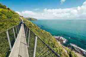 Te Araroa Paekakariki Escarpment Walk swing bridge